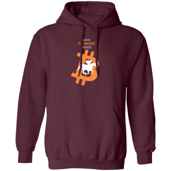 Bitcoin Hoodie Maroon / S Own The Fastest Horse Hoodie