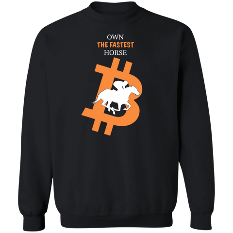 Bitcoin Sweatshirt Black / S Own The Fastest Horse Sweatshirt