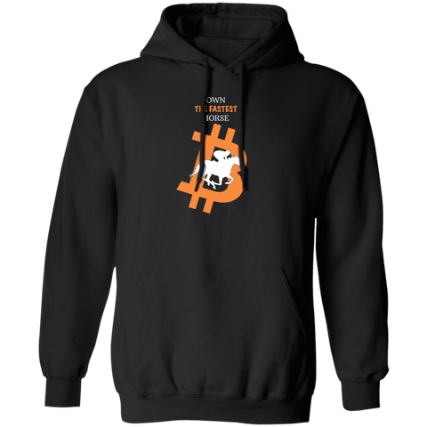 Bitcoin Hoodie Black / S Own The Fastest Horse Hoodie