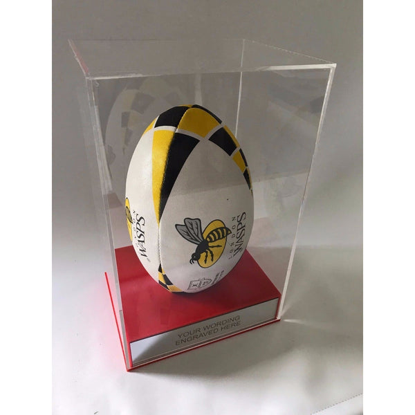 Display Case Rugby Ball Portrait Pesonalised
