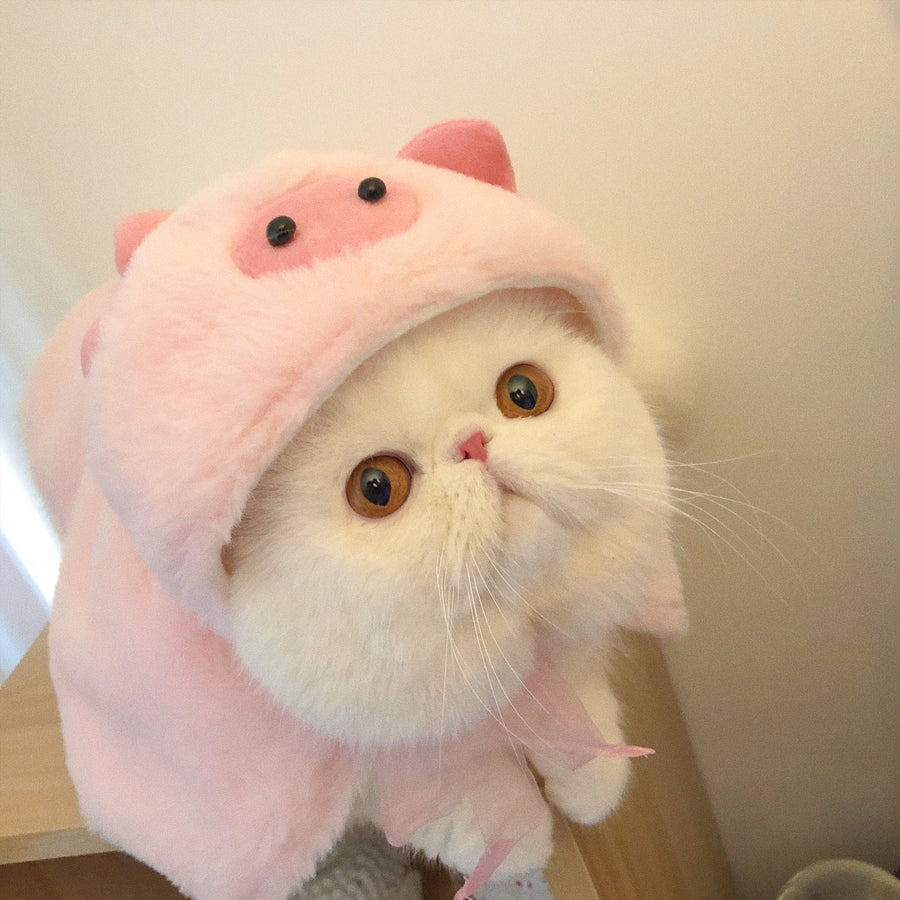 Hello there, I'm the piggy cat pet cosplay cap - Peiliee Shop