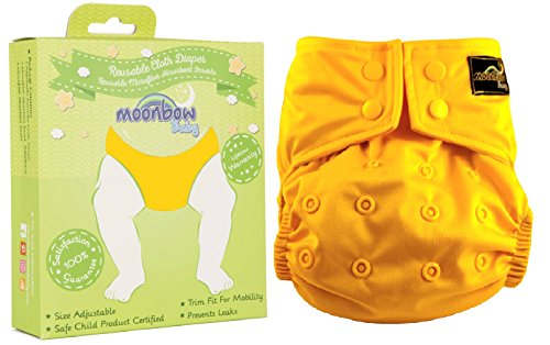 Reusable Waterproof Cloth Baby Diaper: Pocket Cover for Diapers with Two Inserts (Autumn Leaves Yellow)