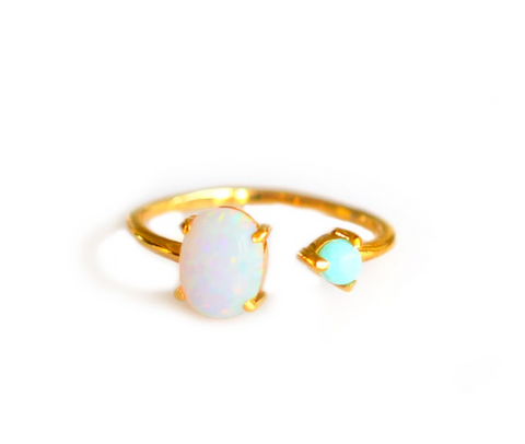 Turquoise and Opal Dual Ring - Lifetique