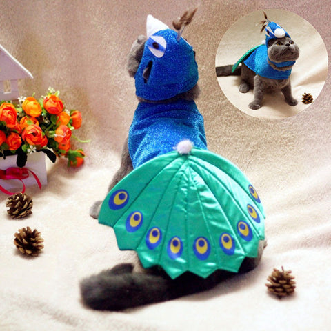 [HOT] Luxury Peacock Cat Costume for Haloween 2017