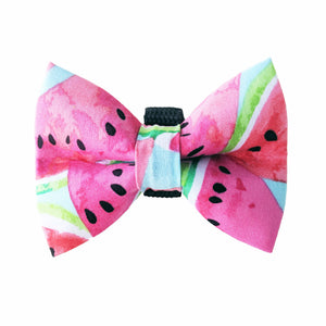 Down by the Bay Watermelon Bow Tie