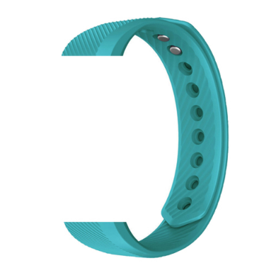 Tiffany Blue Replacement Band