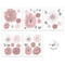 The Flower Box Decals Sets - Chantilly - Isla Dream Prints