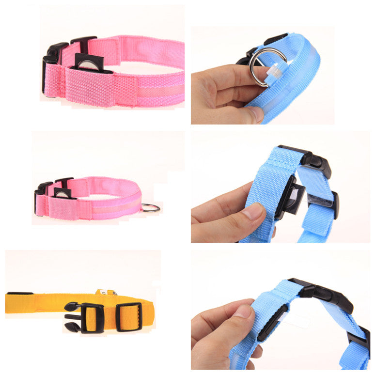 Safety Light Up LED Dog Collar