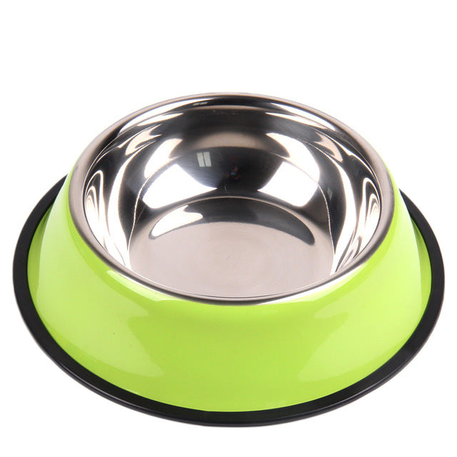 Retaining Cup Of Water And Food Of Dogs And Cats