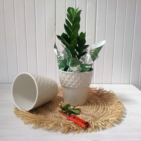 white  ceramic pot with geo pattern