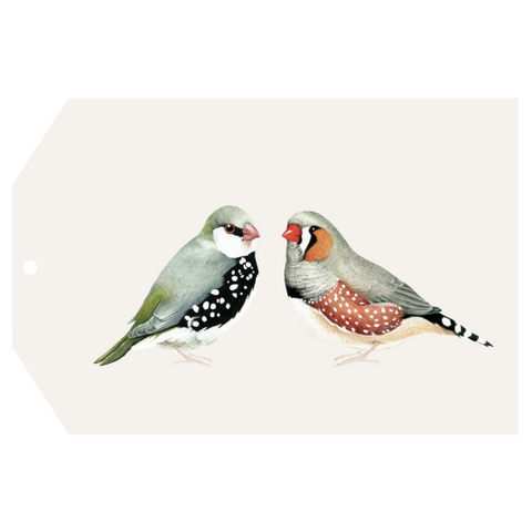 A COUPLE OF BIRDS gift tag