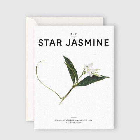 THE STAR JASMINE greeting card
