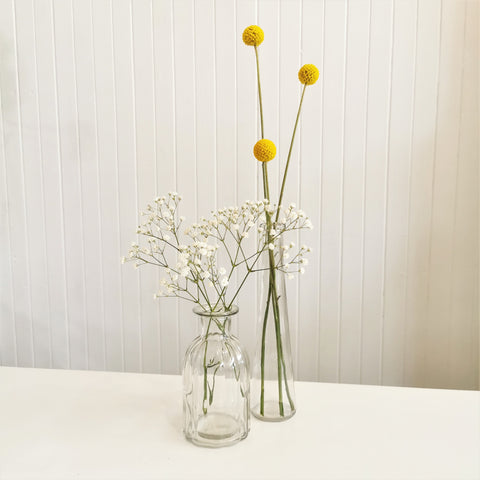 bloom glass vase
