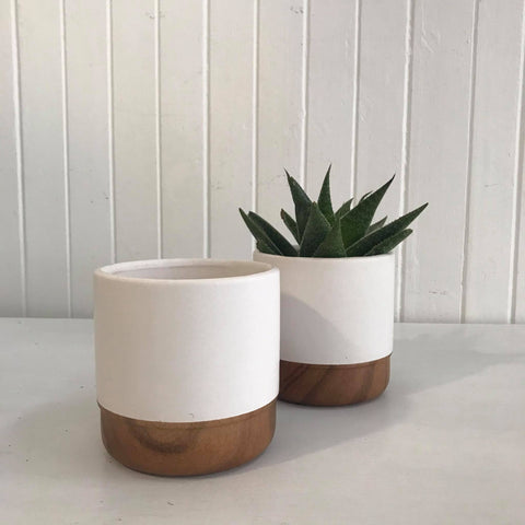 ceramic matt white pot with wooden trim