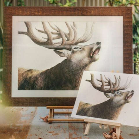 Stag 'The last broadcast' print by Nikki McIvor