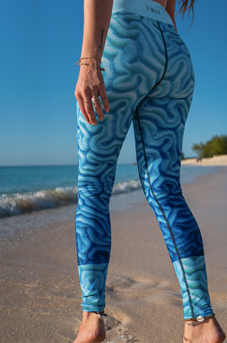 Brain Coral - Sports -  Underwater  Leggings