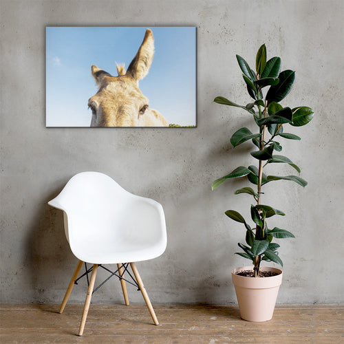 I See you Donkey 2 - Canvas
