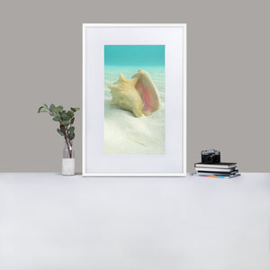 Dreams from the Sea iii - Matte Paper Framed Poster With Mat