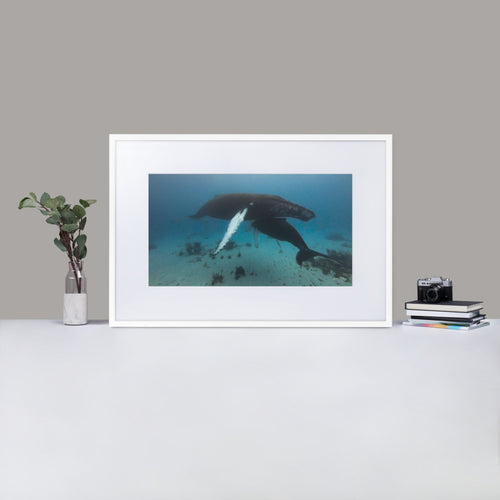 Mama and baby whale - by Justin Okoye Matte Paper Framed Poster With Mat