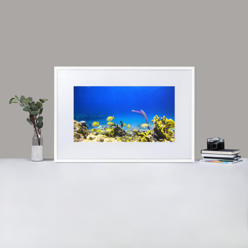 Sea fan Yellow fishes - Matte Paper Framed Poster With Mat - Fay Ninon