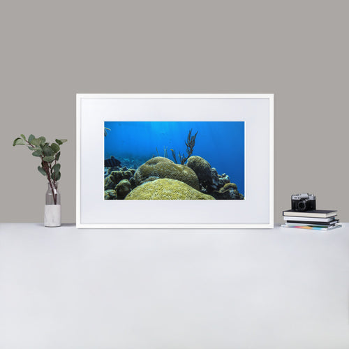 Coral Underwater - Matte Paper Framed Poster With Mat