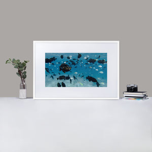 School of Fish - Matte Paper Framed Poster With Mat by Fay Ninon