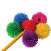 Hedge Ball Pencil Tops (One Dozen) - School Stuff