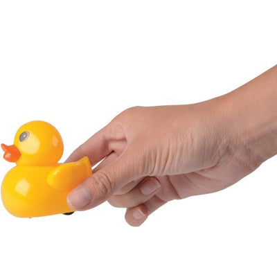 pull back ducks 1 dozen   Novelties and Toys