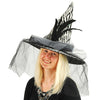 Zebra Witch Hat with Tulle & Feathers - Holidays