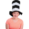 Black and White Striped Stove Pipe Top Hat - Costumes and Accessories