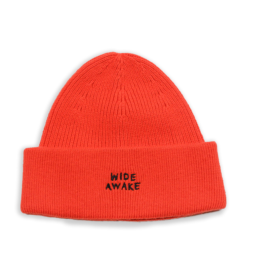 CLAY WIDE AWAKE EMBROIDERED BEANIE