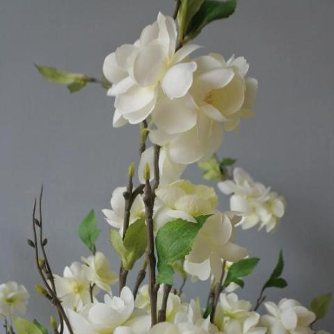 Apple Blossom - Off White