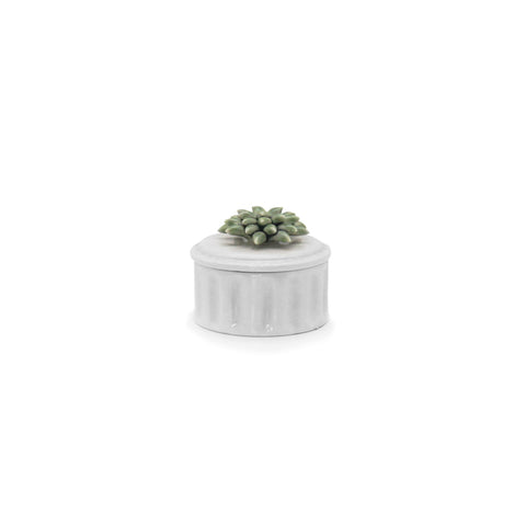Joy Cylindrical Succulent Candy Holder