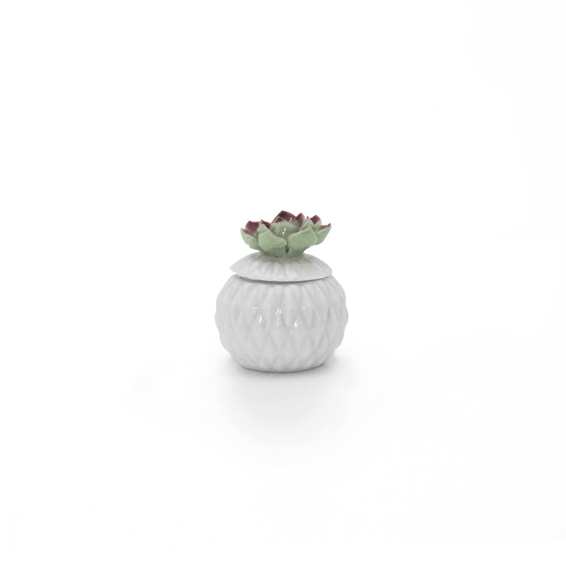 Joy Round Succulent Candy Holder