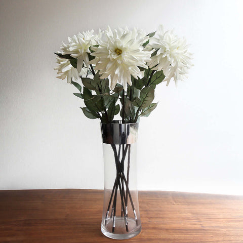 Single Chrysanthemum White