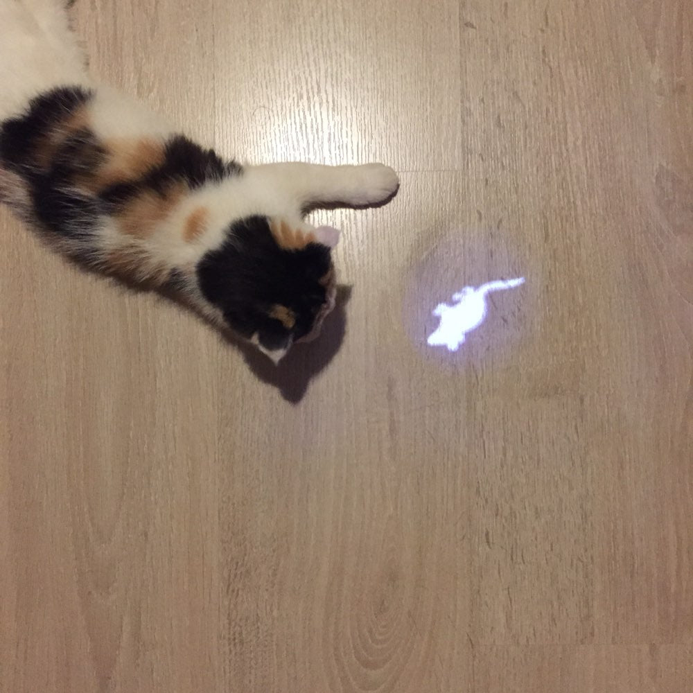 Cat Toy Laser Light Mouse Pattern | PawRawrCollection