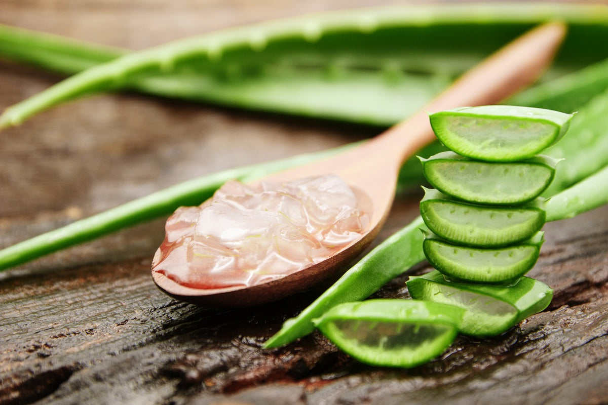 What's In Your Skincare – Aloe Vera Extract