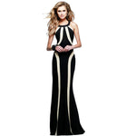 The Oscar Awards Gown or Maxi Dress