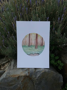 Enchanted Forest - Print