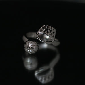 Basketball Adjustable Rings