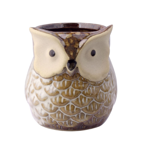 Image of 6Pcs/set Owl Flower Pot Indoor - K