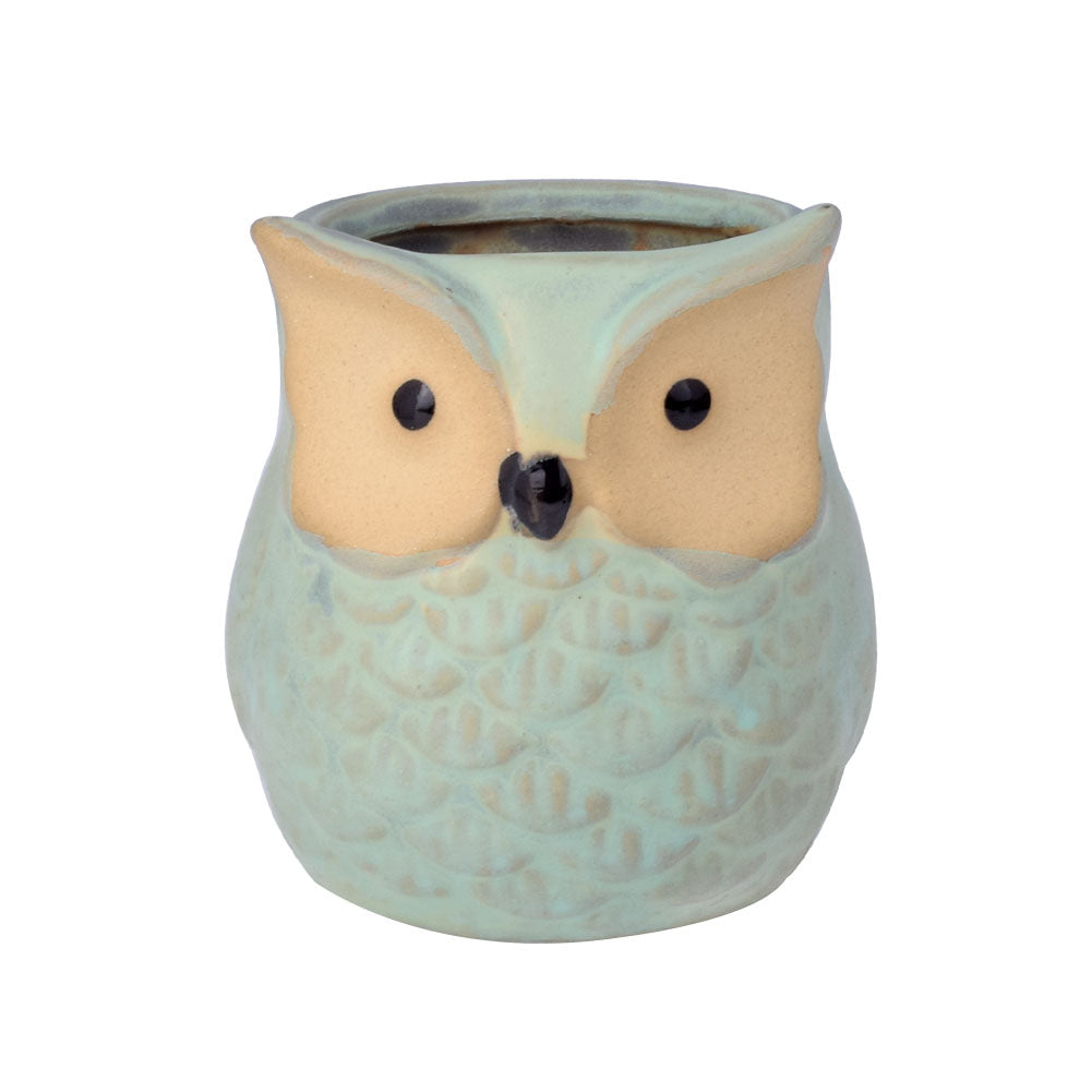 6Pcs/set Owl Flower Pot Indoor - K