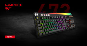 Tastatura gaming mecanica Havit GAMENOTE KB473L, iluminare LED RGB, 112 taste