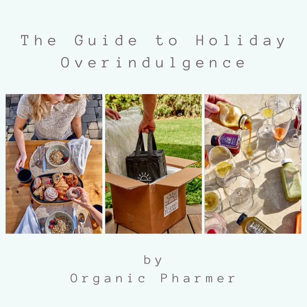 guide to holidays overindulgence and sustainable wellness through intentional cleansing, healing soups and wellness shots that are gluten free, dairy free, corn free, soy free and toxic oil free vegan and organic
