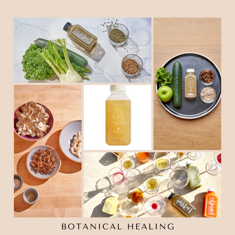 Organic pharmer lead your best most vibrant life with botanically infused beverages, healing soups and granola