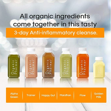 all organic ingredients come together in this tasty 3 day anti-inflammatory cleanse botanically infused with medicinal purpose. Our cleanses are nutritionally sound, organic and healing