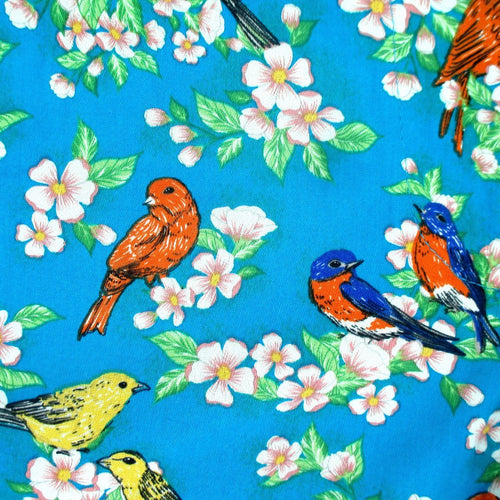Rock Atoll Womenswear Colorful Robin Birds All Over Pattern Shorts for Ladies Women and Girls