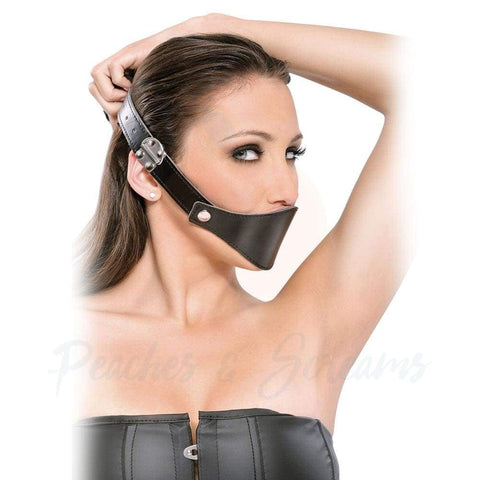 3-in-1 Mouth Gag with 3 Mouthpieces, Nose Hook and Muzzle