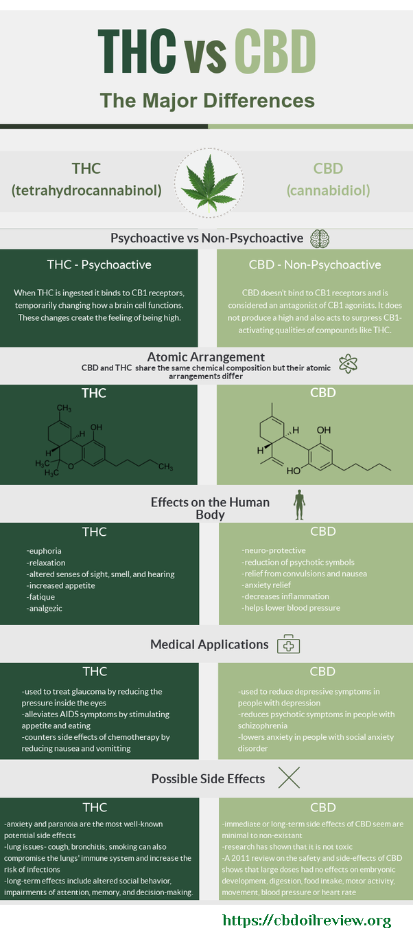 Why Everybody Needs To Take CBD 3