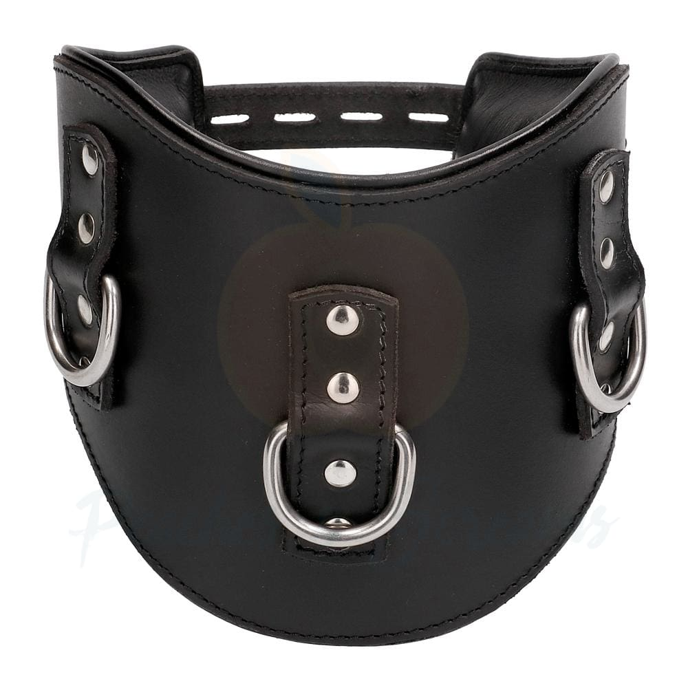 Heavy Duty Black Leather Padded Bondage Posture Collar - Necronomicox